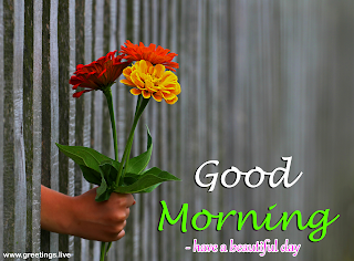 Surprising Good Morning Wishes with Lovely Flowers in Hand