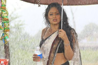 Nikesha Patel hot saree wet photos