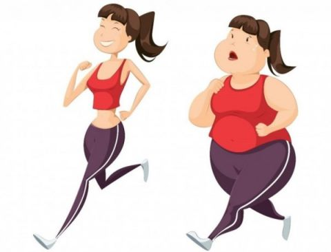 Effective and fast diet