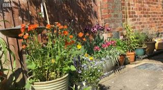 Helen from Coventry garden