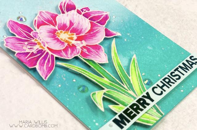Maria Willis, Cardbomb, #ellenhutson, #mondoamaryllis, #danielsmith, #danielsmithwatercolors, #cards, #stamp, #ink, #paper, #cardmaker, #cardmaking, #handmade, #handmadecards, #art, #color, #watercolor, #papercraft, #flower, #christmas, #tonicstudios, #tonicstudiosusa,