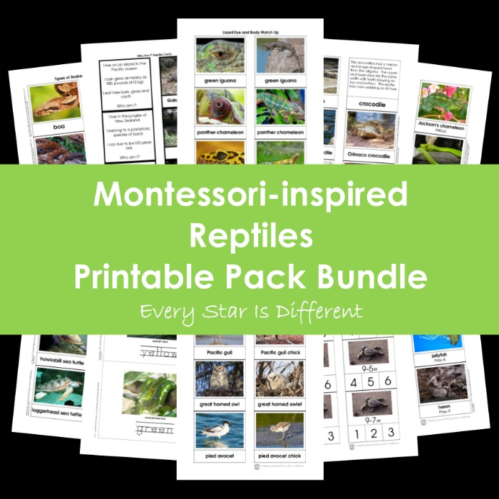 Montessori-inspired Reptiles Printable Pack