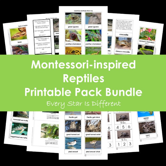 Montessori-inspired Reptiles Printable Pack Bundle