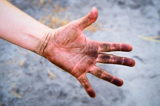 Dirtiest part of human body