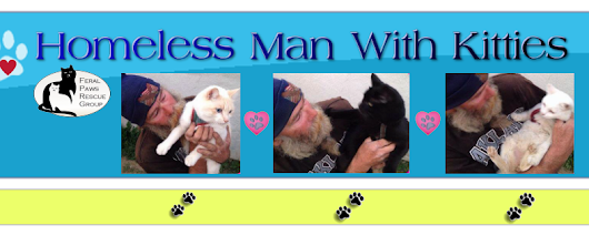 Please Help Homeless Man with 3 Kitties!