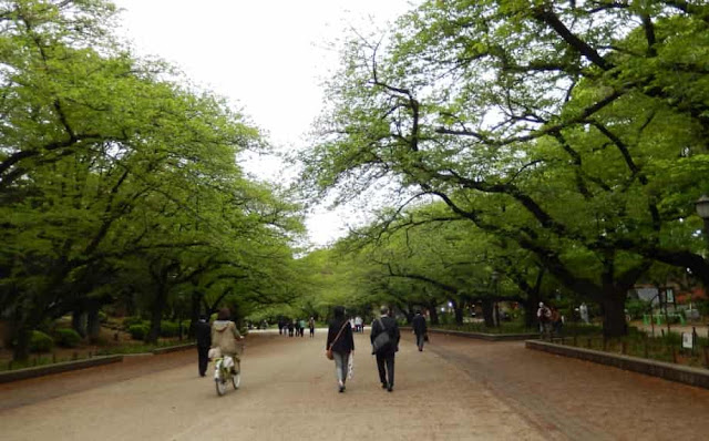 حديقة أونيو العامه في اليابان,Ueno