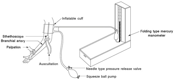 How To Measure Blood Pressure Using Mercury Sphygmomanometer