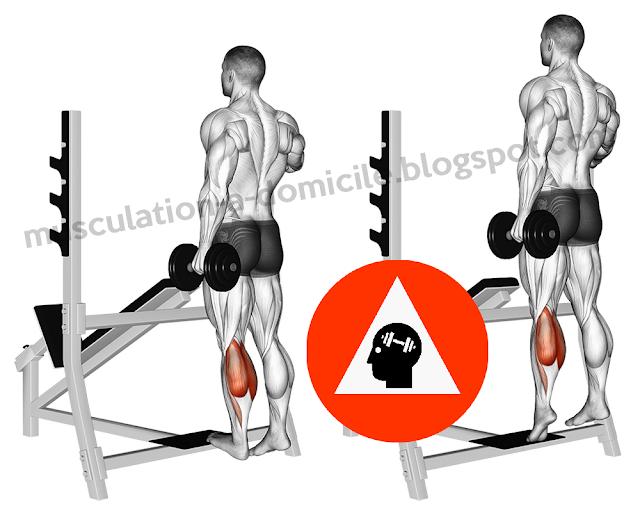 exercice musculation extension mollet debout haltère
