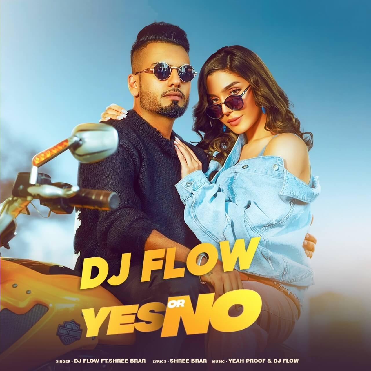 Yes Or No by DJ Flow x Shree Brar Song Lyrics In English