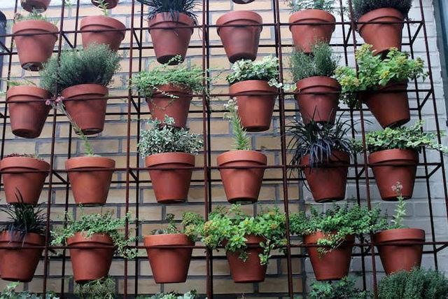 um jardim com pouco espaço