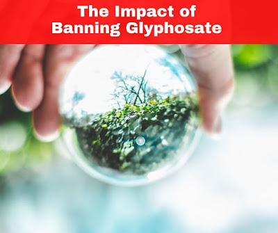 The Impact of Banning Glyphosate