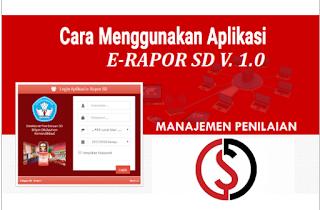 Cara Download dan Menggunakan Aplikasi e Rapor