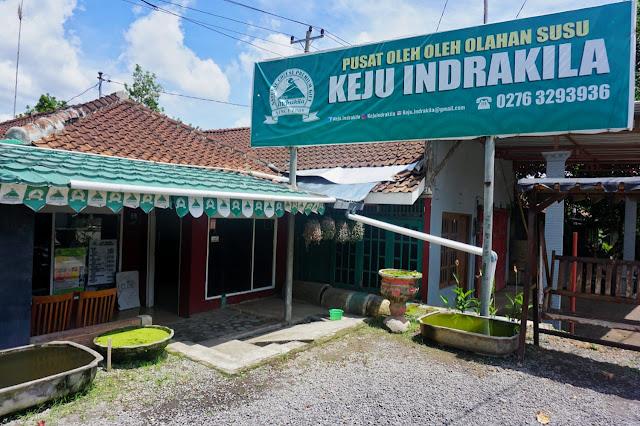 Keju Indrakila