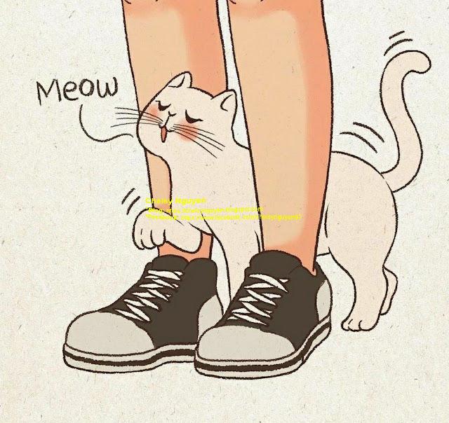mèo tâm linh 2
