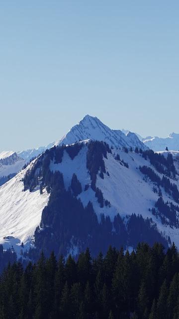 Mountain, Top, Snow, Trees, Winter, Landscape