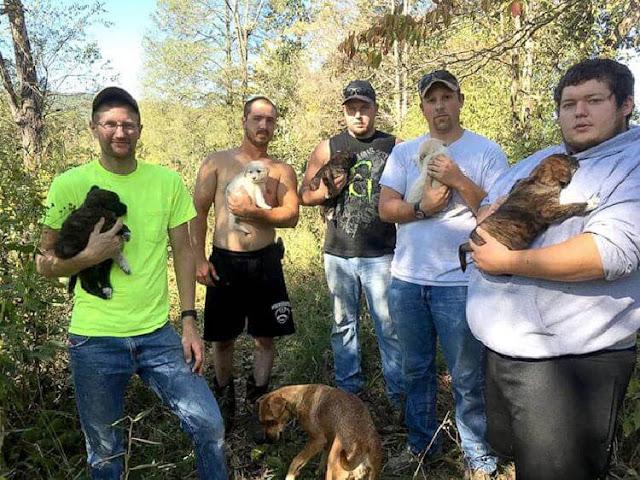Мужчины устроили мальчишник, как вдруг из леса вышла бродячая собака…