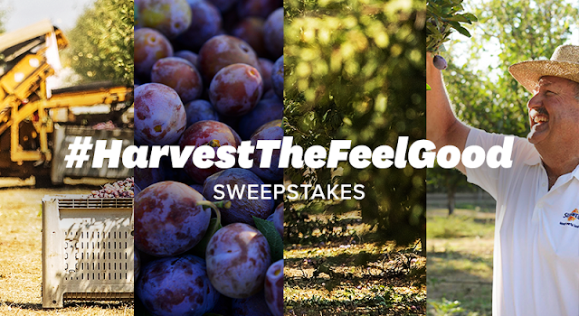 Sunsweet wants to see your garden! Share with them for a chance to win a gift basket or you may score a $500 Home Depot Gift Card!