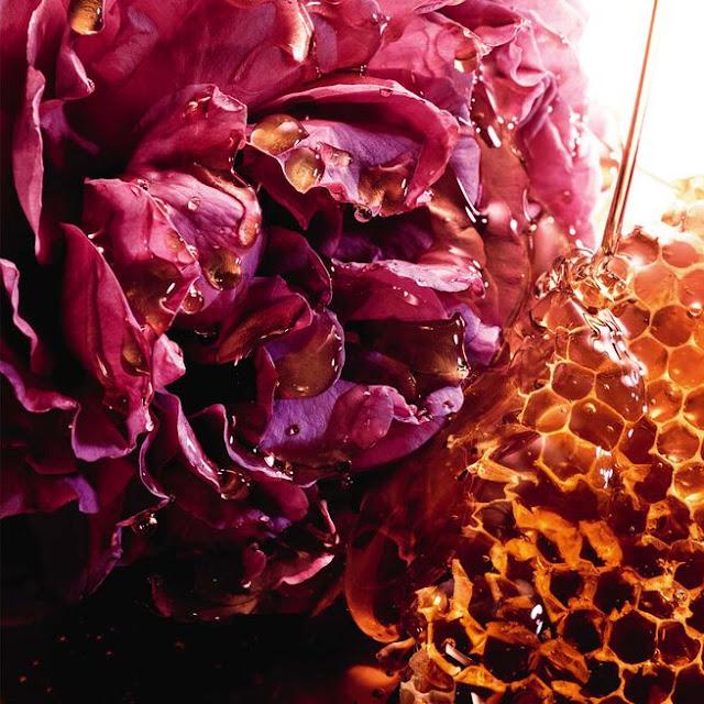 guerlain la petite robe noire nectar avis, parfum guerlain la petite robe noire nectar, la petite robe noire guerlain avis, guerlain la petite robe noire edp, la petite robe noire nectar parfum, nouveau parfum femme guerlain, guerlain parfums, parfum femme guerlain, parfum féminin, blog parfum, perfumes, perfume blog, parfums, meilleur parfum femme