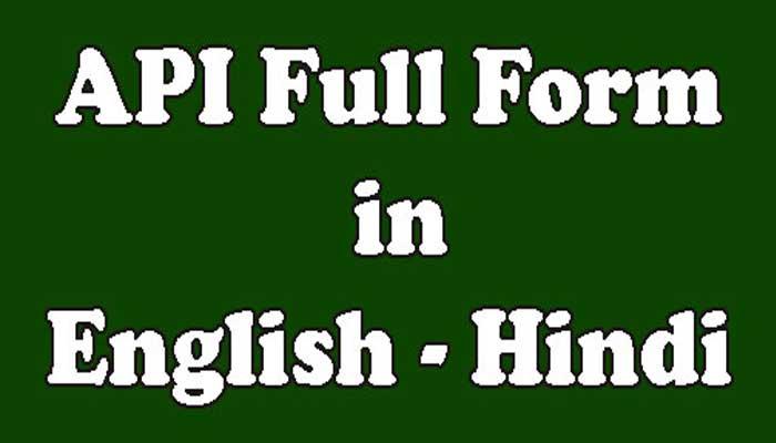 API Full Form Meaning in Hindi – ए.पी.आई क्या है?