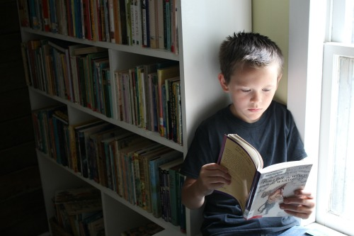boy reading a book in a home library