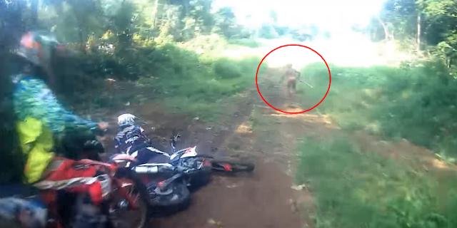 Makhluk Misterius tertangkap Kamera Pemotor di Hutan Aceh jadi Tren 1 YouTube