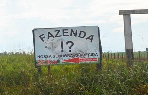 TENSÃO: Seguranças privados e invasores trocam tiros em fazenda de Rondônia