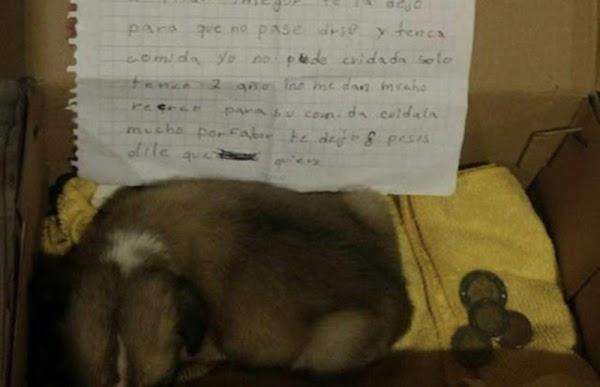Padres obligan a niña a abandonar a perrita por ser `corriente´, deja carta y 8 pesos.