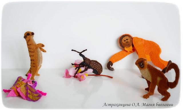 пальчиковый-театр-сурикат-винный-бражник-мартышка-орангутан-цветоед