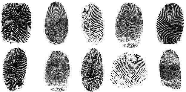 10 Amazing Fingerprint Facts In Hindi