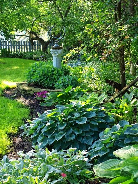 Lady Anne's Cottage: A Charming Shade Garden... on Shady Yard Ideas id=12855