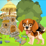 G4K Beagle Puppy Rescue G…