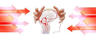 ما هي سكتات الدماغ الجذعية
