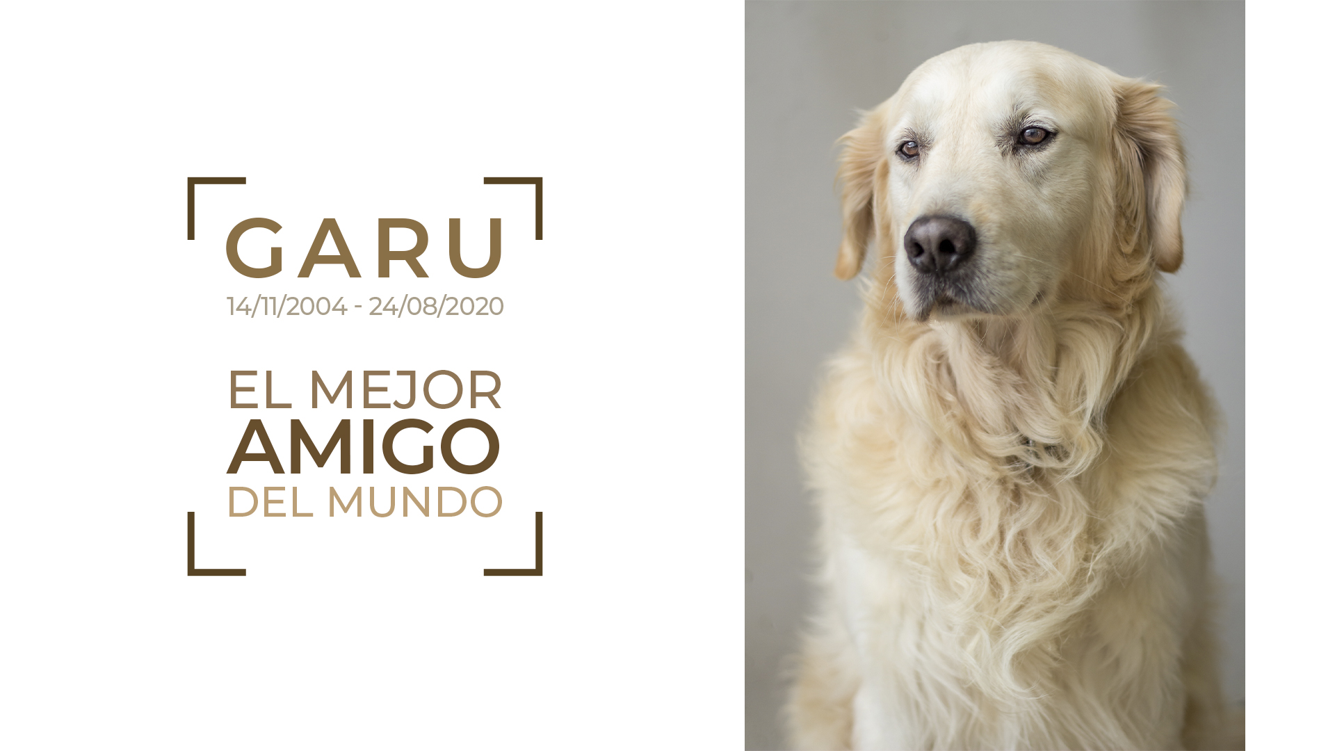 Garu, el mejor amigo del mundo