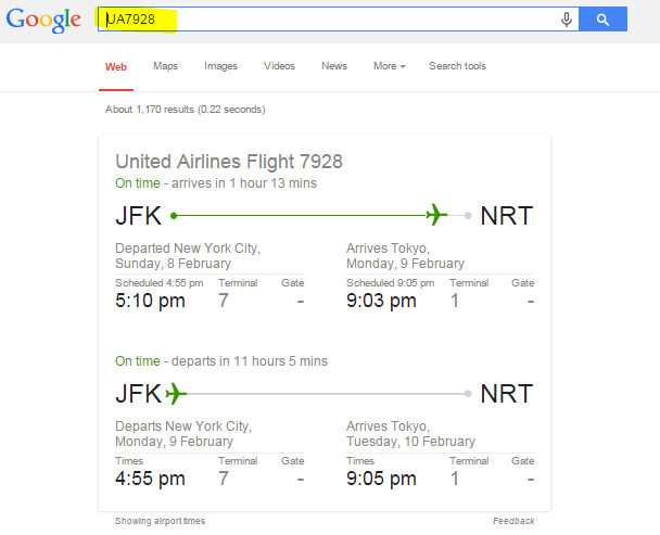 Check Flight Status on Google