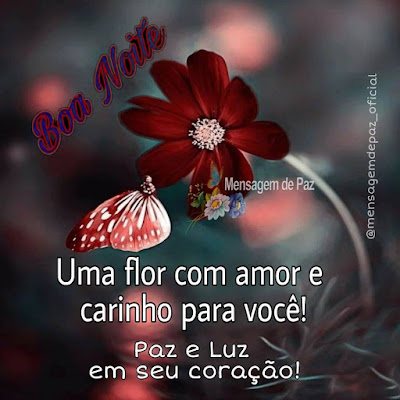 Uma flor com amor e carinho para você! Paz e Luz em seu coração! Boa Noite!