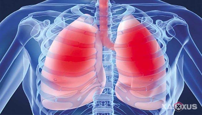 Fakta 9 - Tulang dan paru-paru janin 21 minggu mulai terlihat saat USG