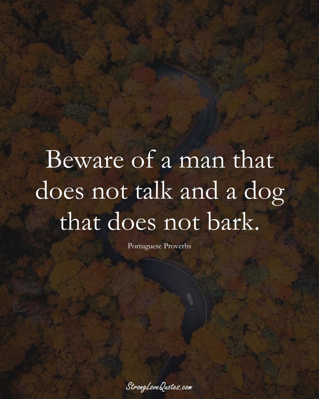 Beware of a man that does not talk and a dog that does not bark. (Portuguese Sayings);  #EuropeanSayings