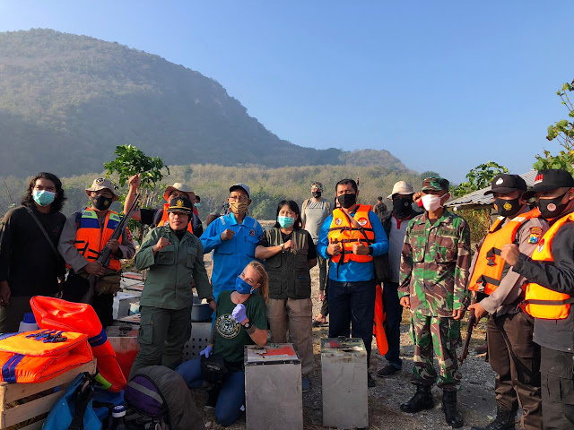 40 Monyet Ekor Panjang Dikembalikan ke Pulau Nusa Barong