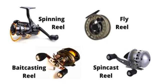 reel spinning dan baitcasting