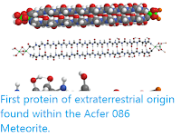 https://sciencythoughts.blogspot.com/2020/04/first-protein-of-extraterrestrial.html