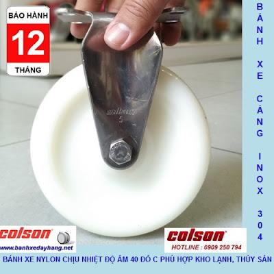 Bánh xe Nylon 6 càng inox 304 cố định phi 125 Colson | 2-5408-254 www.banhxeday.xyz