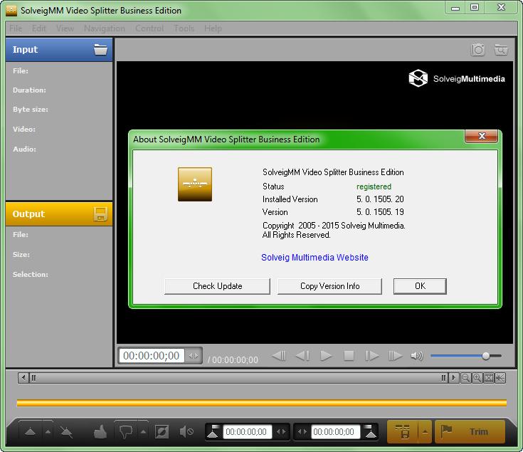 SolveigMM Video Splitter Business 6.1.1811.19 + Serial crack