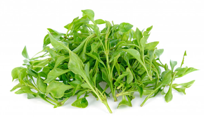 What are the benefits of watercress for the body - for slimming - for hair