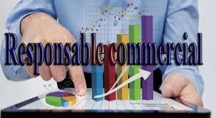 Avis_de_recrutement:_Responsable_Commercial_chez_Multi_TV_Cameroun_S.A