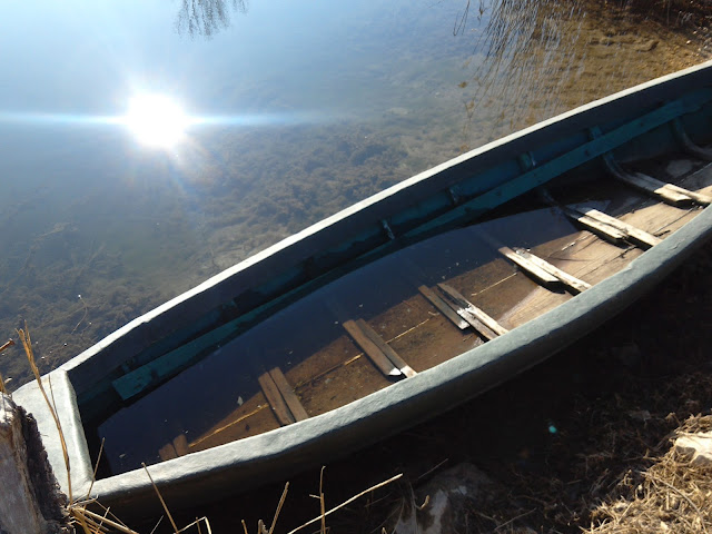 #boat #traditionalboat #swamp