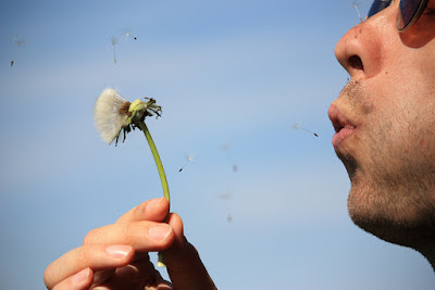 Man making a wish by blowing on a dandelion