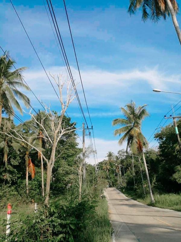 ขายที่ดินเกาะกูดราคาถูก อ.เกาะกูด จ.ตราด ติดเส้นถนนกาญจนา เส้นหลักไปทางที่ว่าการอำเภอ