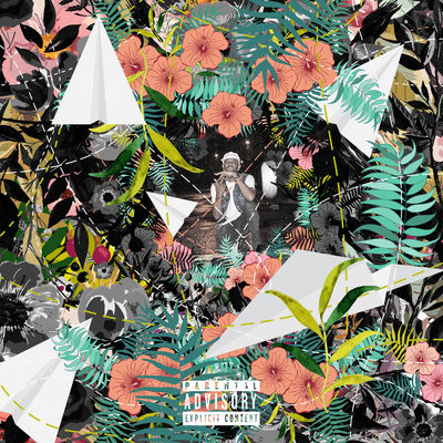 Tuki Carter - Flowers and Planes - Album Download, Itunes Cover, Official Cover, Album CD Cover Art, Tracklist