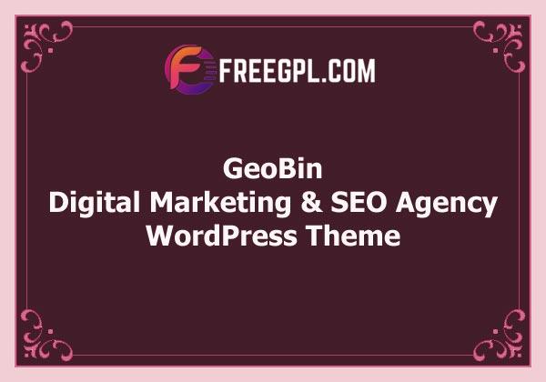 GeoBin | Digital Marketing Agency, SEO WordPress Theme Free Download