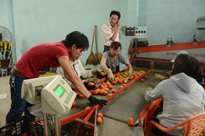 Nha khoa hoc nong dan Thanh tuu voi nhieu sang tao